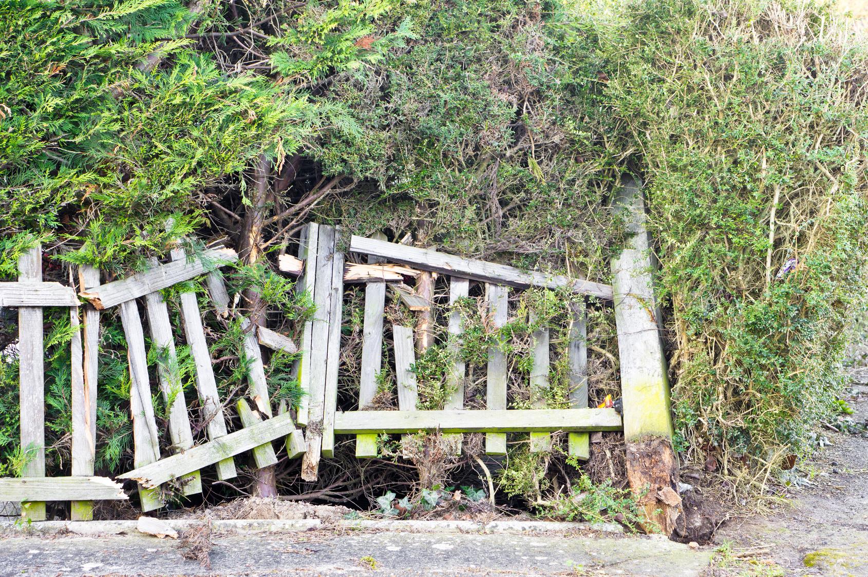 Schadenfall Zaun